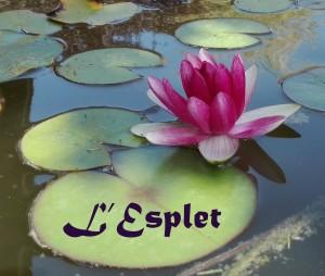 logo-lesplet